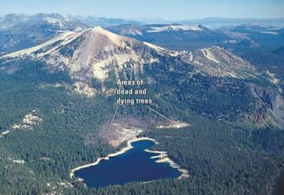 Dinojim Com Dante S Peak Geological Movie Review